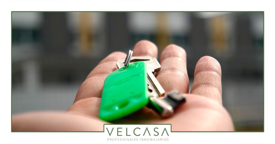 Novedades en el mercado del alquiler con el nuevo decreto ley | VELCASA, inmobiliaria en Sevilla